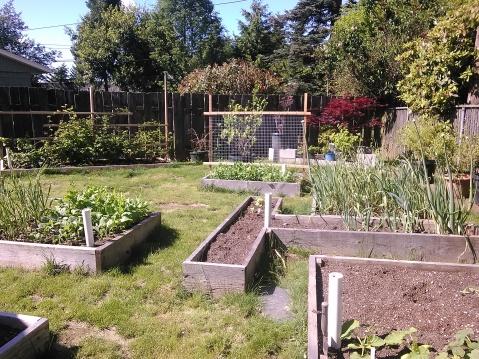 Garden Spring 2014